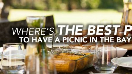 The Barnes Firm - Best of The Bay Picnic Spots